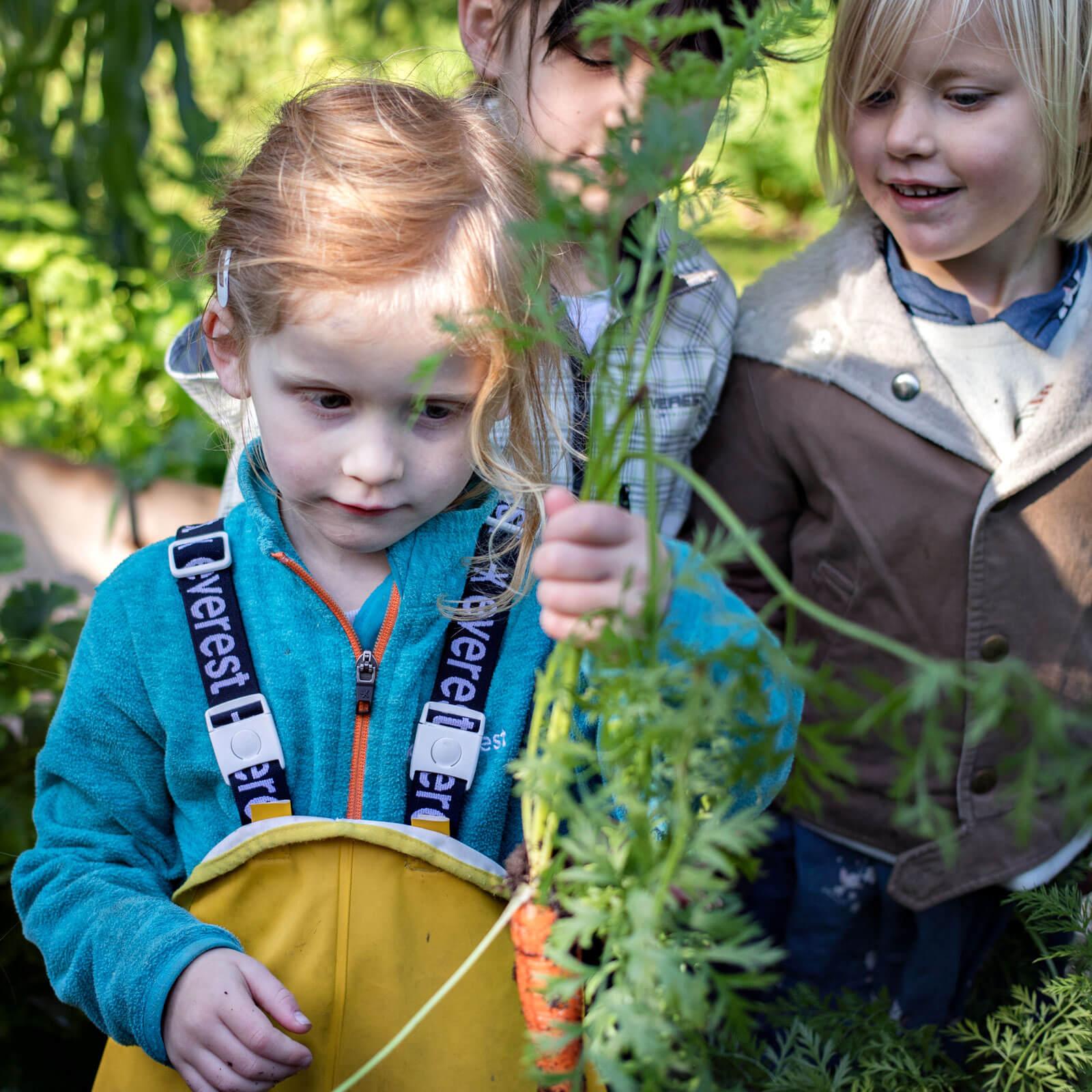 Odla barns intresse för det som växer | Natur & Trädgård